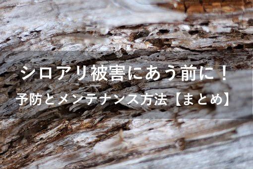 f:id:hiro-secondwork:20201023002529j:plain